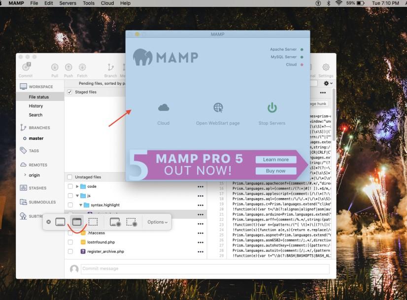 screenshot for selected window macOS